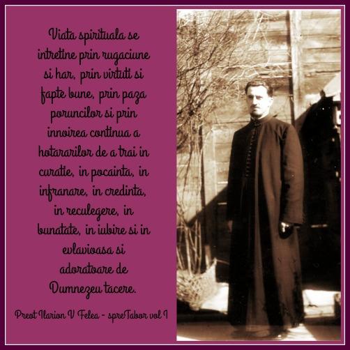 Preot Ilarion Felea (2)